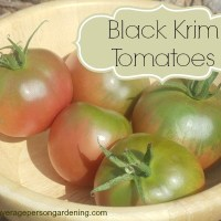 From The Farm Blog Hop & Black Krim Tomatoes