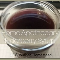 "Home Apothecary:  Home Made Elderberry Syrup ""The Flu Fighter"""