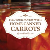 From The Farm Blog Hop & Fill Your Pantry with Home Canned Carrots