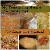 My Thanksgiving Menu - Paleo, Gluten-Free, and Traditional & Food Safety Tips
