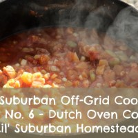 The Suburban Off-Grid Cooking Series No. 6 - Dutch Oven Cooking