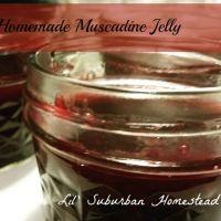 Homemade North Carolina Muscadine Jelly Recipe (Healthy Too!)