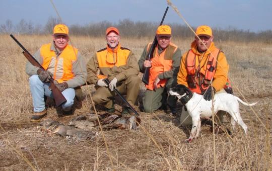 Upland Birds- Pheasant hunting Kansas (25)