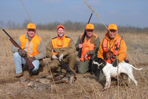 Pheasant Hunting | Upland Bird Hunts