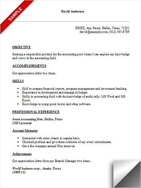 accountant objective resume examples
