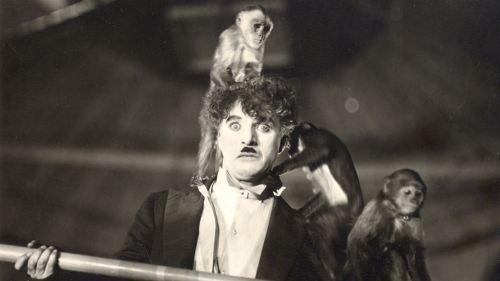 Barnbio Cirkus