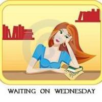 The Bone Witch by Rin Chupeco {Waiting on Wednesday}