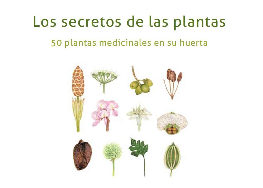 Los Secretos de las Plantas. 50 plantas medicinales en su huerta.