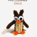 How to Make Pipe Cleaner Owls