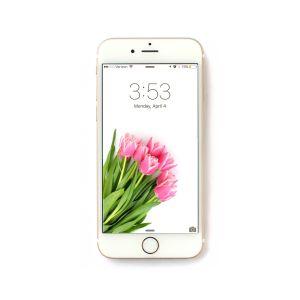 Spring Tulips Free iPhone Wallpaper