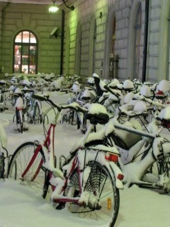 Bicycles buried under snow