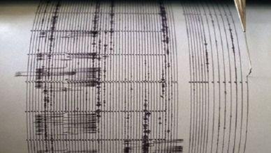 sismografo-130815101010_big
