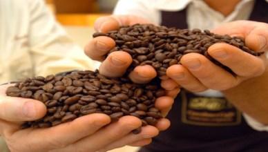 caffe estinzione