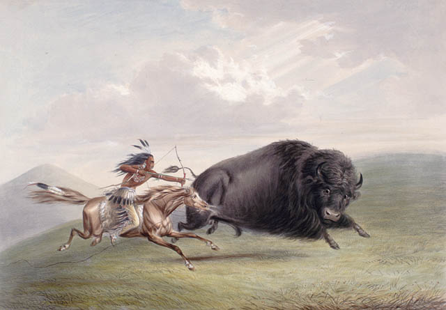 Hunting Bison in USA, George Catlin, Library and Archives Canada