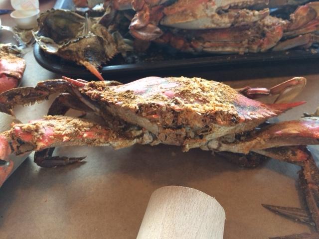 crablookingatme
