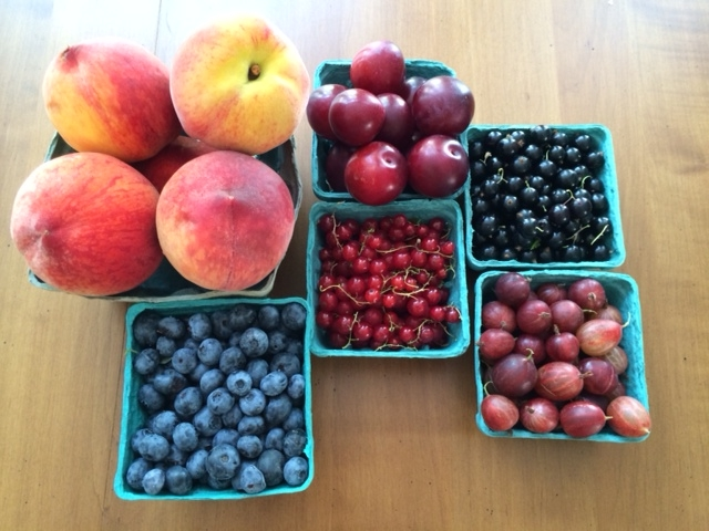 summer berries and fruit