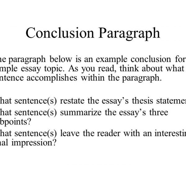 Essays Conclusion Administrative Example Resume Help Writing