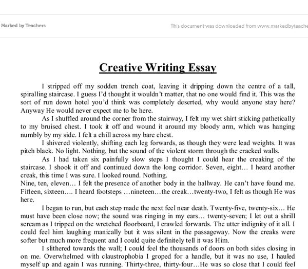 Write Essay Examples \u2013 Nardellidesign in Essay Writing Format In