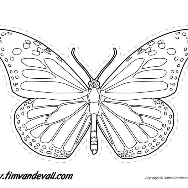 Monarch Butterfly Outline \u2013 Tim\u0027s Printables Throughout Monarch