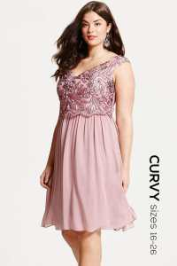 Little Mistress Curvy Dusty Pink Embroidered Prom Dress ...