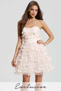 Nude Floral Applique Mini Prom Dress - from Little Mistress UK