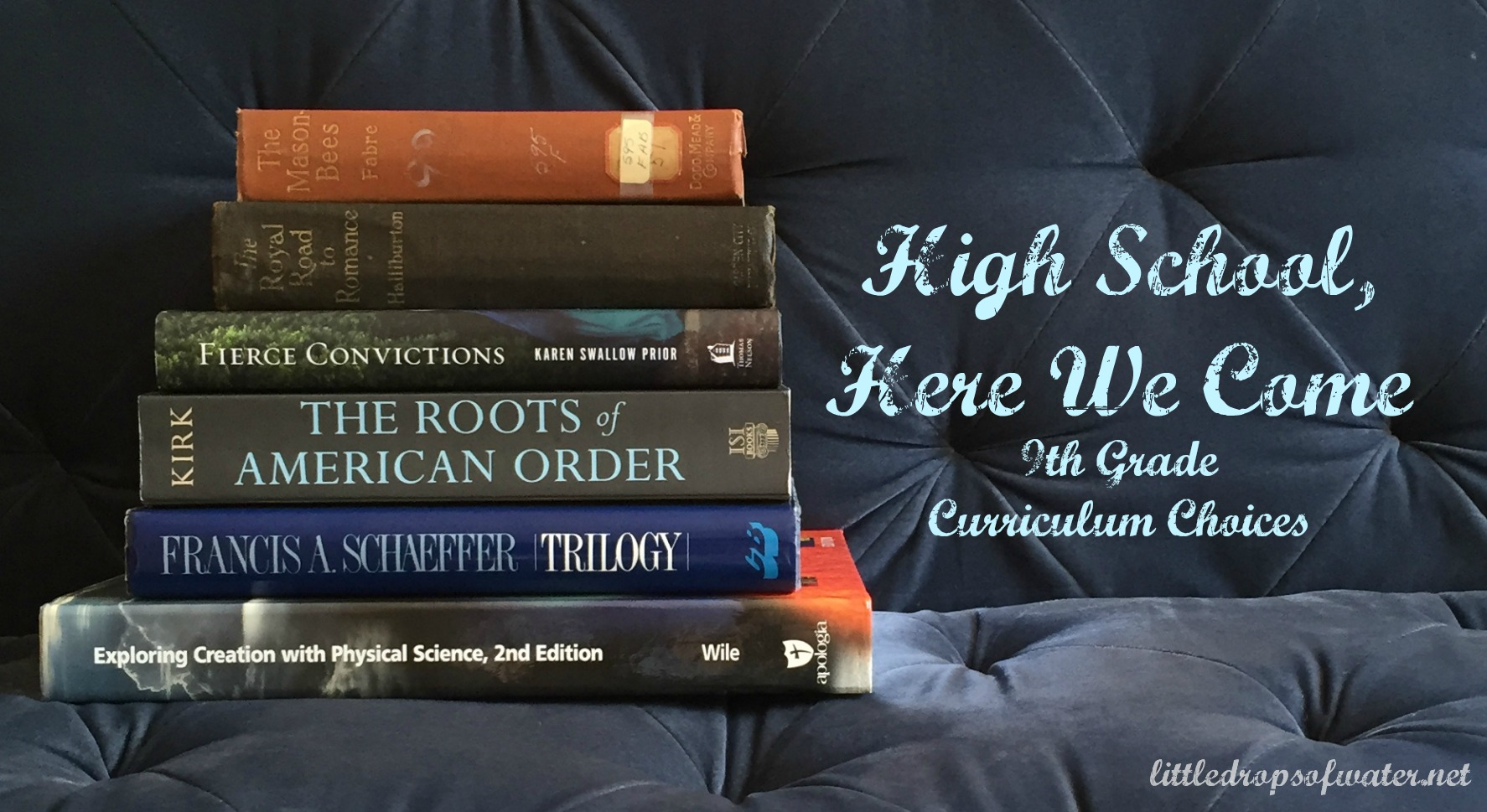High School, Here We Come: 9th Grade Curriculum Choices