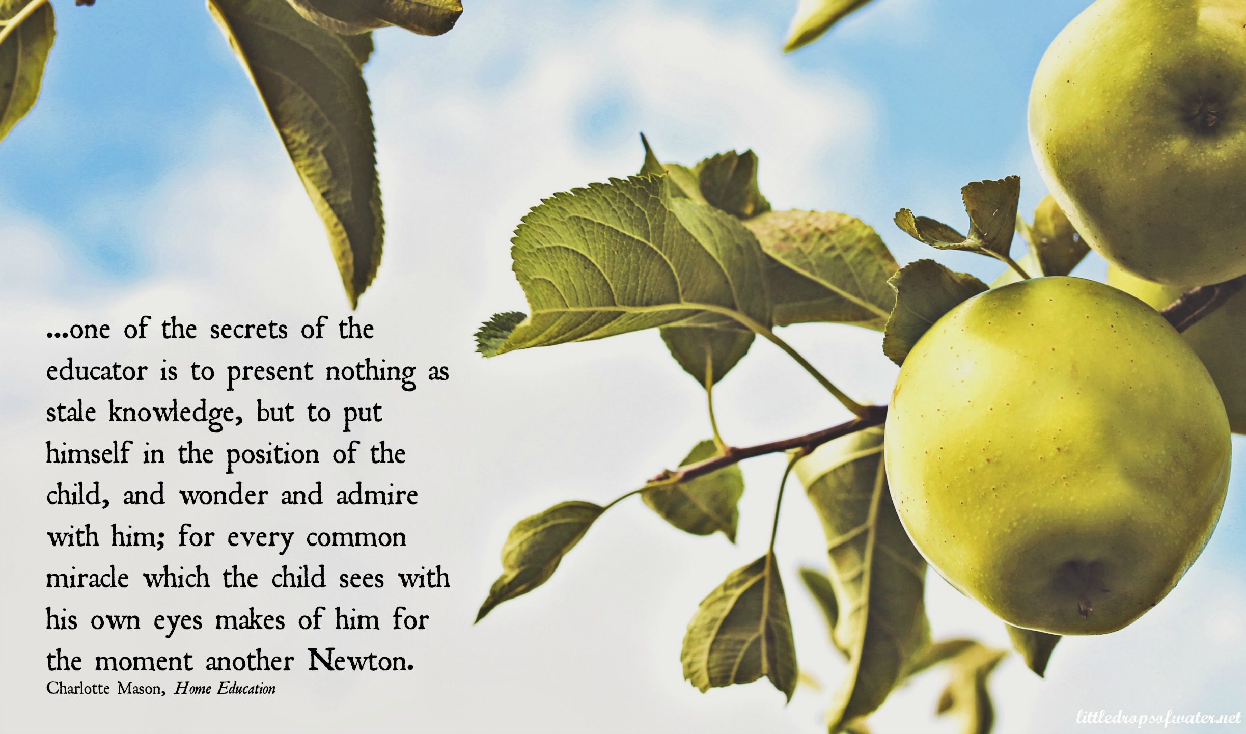 CM Quote of the Day: Another Newton
