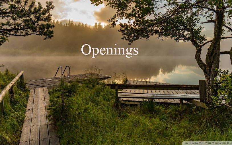 Openings - Little Ducky Daycare