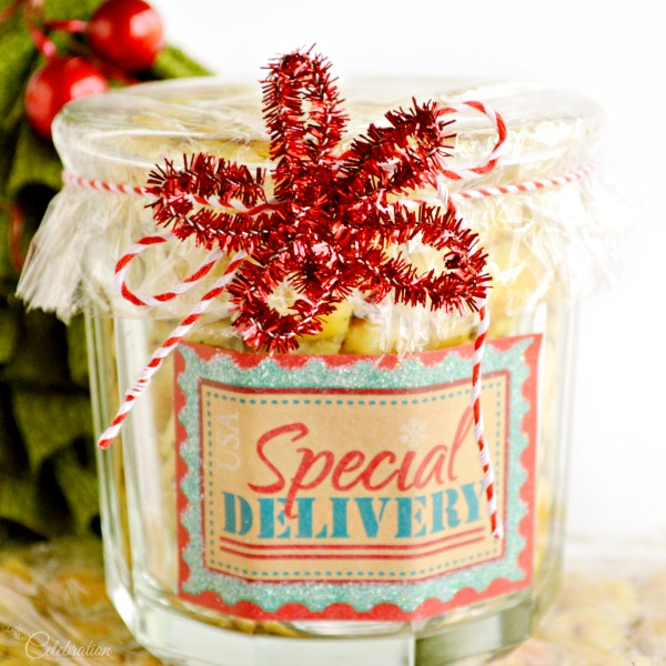 Savory Lemon Dill Oyster Crackers - super fast & easy last minute gift from Little Miss Celebration