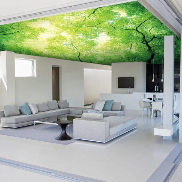 3d Floor Wallpaper Murals Alternative For White Ceiling 3d Ceiling Design Ideas