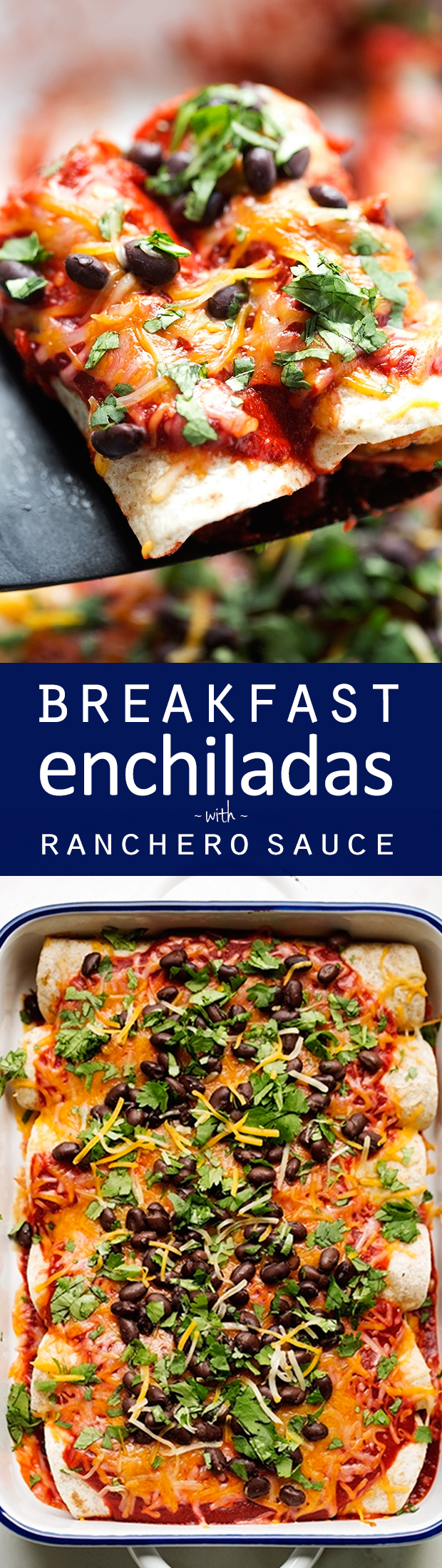 Breakfast enchiladas loaded with shredded potatoes, scrambled eggs ...