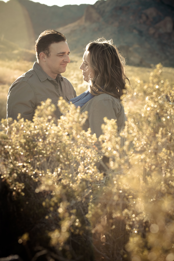 josh & jen photography desert proposal