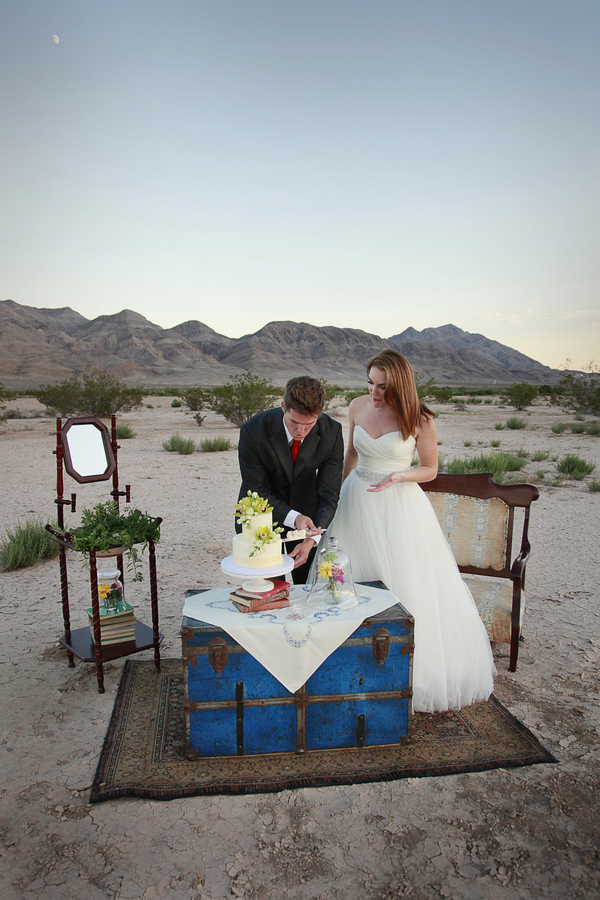 Las Vegas Desert Post-Wedding Session | Denise Burridge Photography