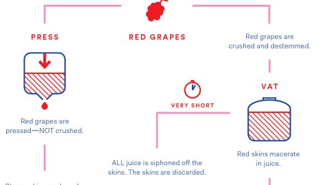 Fact: Most Rosé Is Made From Red Grapes