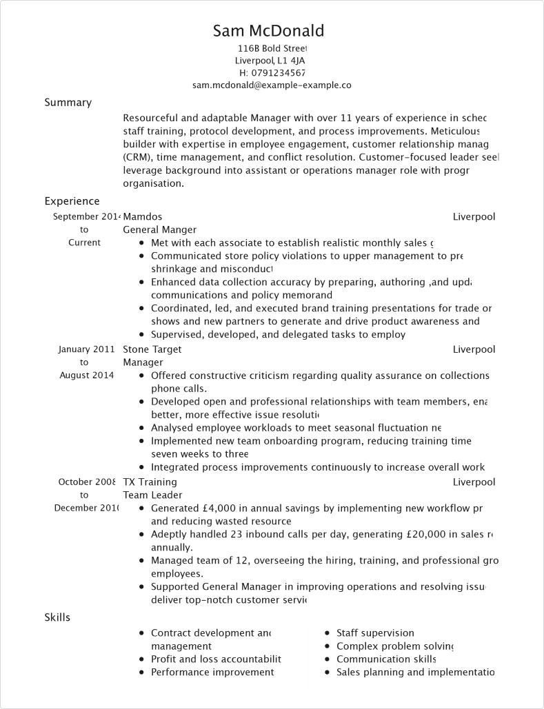 english cv profile example