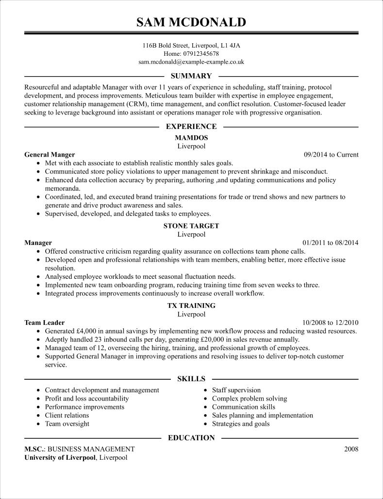Team Lead CV Template CV Samples  Examples
