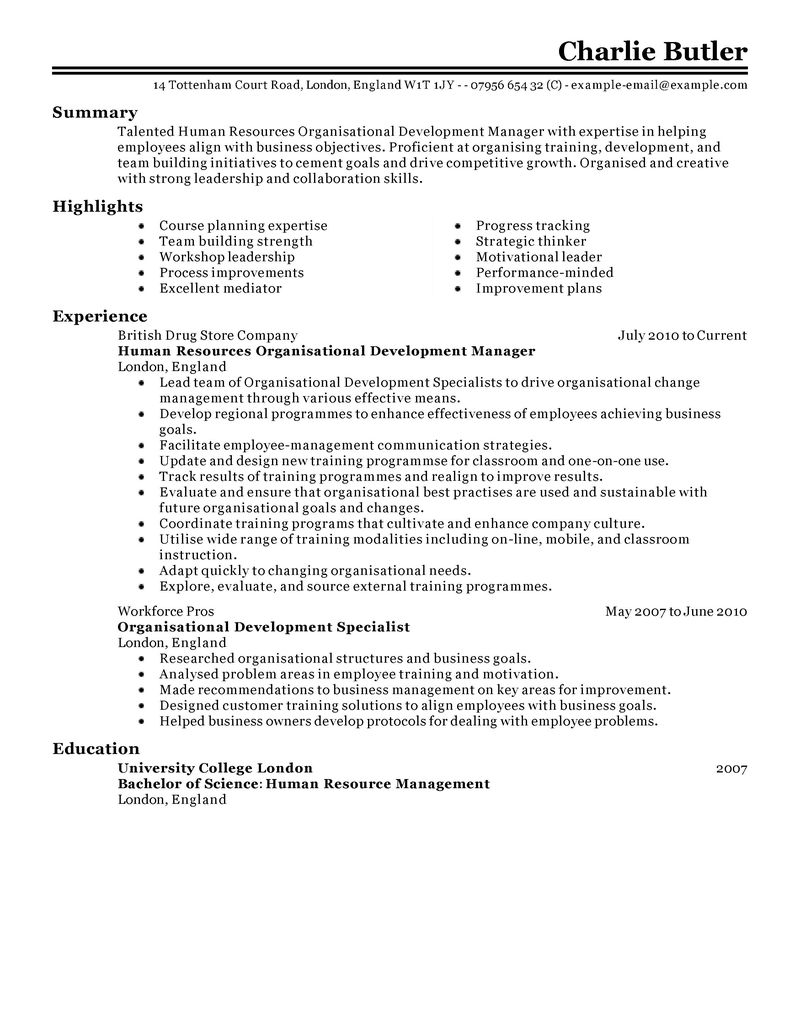 Net web development resume