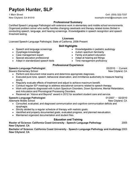 Resume Summary Examples Social Media  Create Professional Resumes