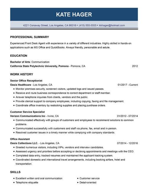 99+ Free Professional Resume Formats  Designs LiveCareer