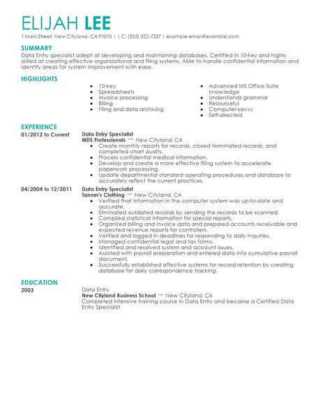 professional summary on resume for data entry