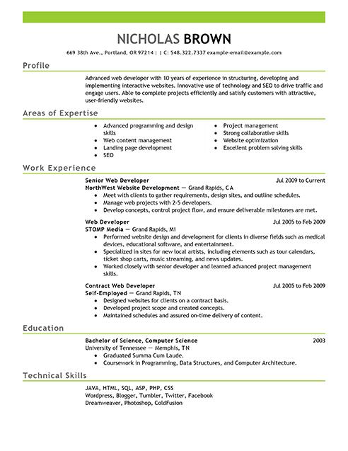 competence cv webdesigner