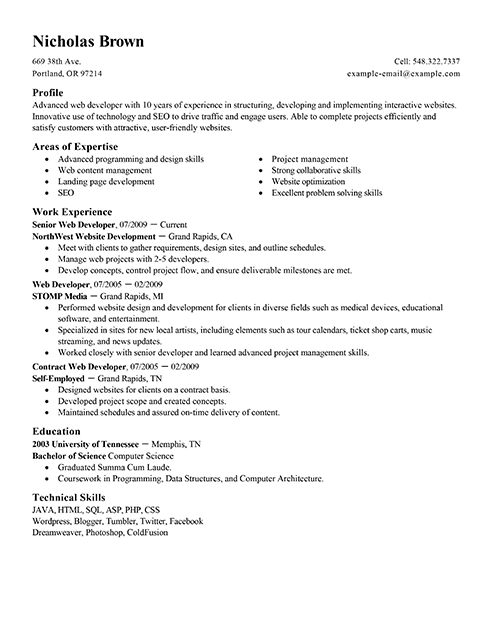 Best IT Web Developer Resume Example LiveCareer - web design resume example