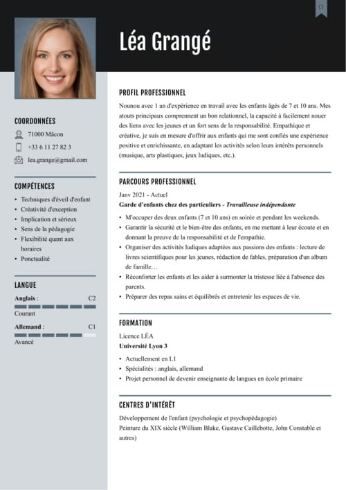 cv introduction exemple