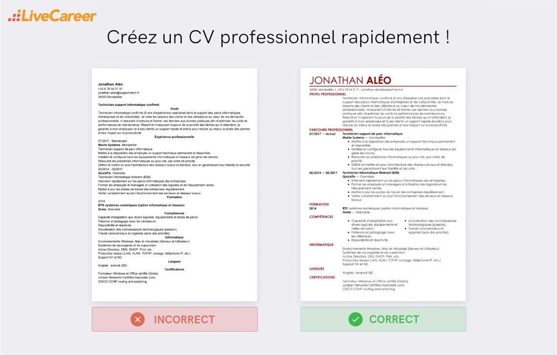 les differents niveaux langages informatiques cv