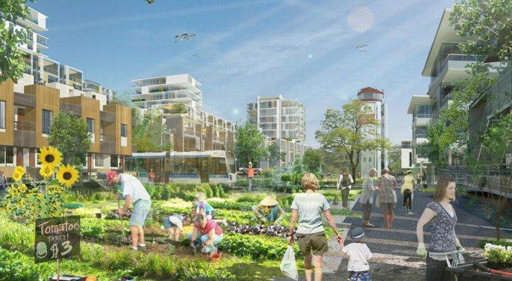 'Agrihoods' Provide Suburban Living Built Around Community Farms