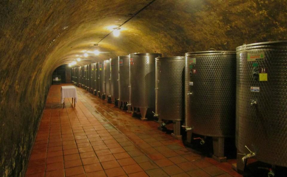 wine suza