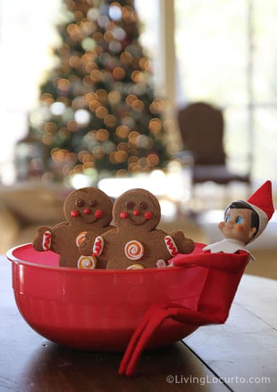 Elf on the Shelf Idea - Magic Seeds {Free Printable}
