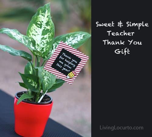 Teacher Appreciation Flower Gift Idea