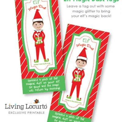 elf on the shelf Archives - Living Locurto