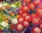 contributor-flower-market-andine-3